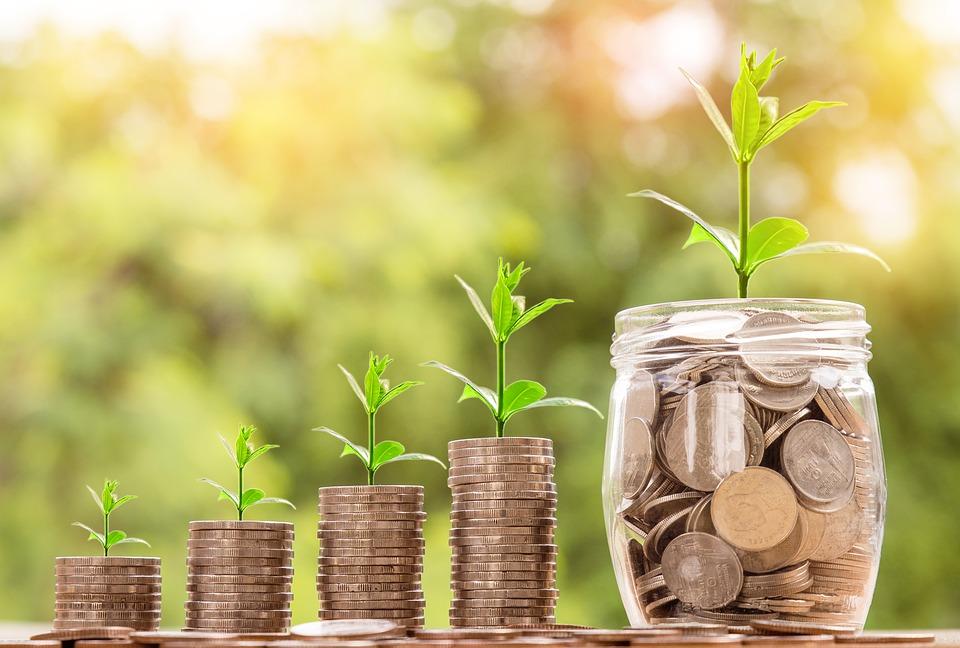 Deferred Retirement Option Program